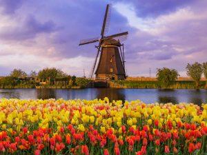 Moinhos de vento em Amesterdão